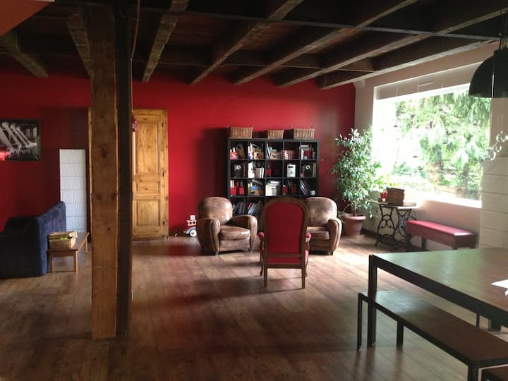 Fantastic loft in Puy en Velay