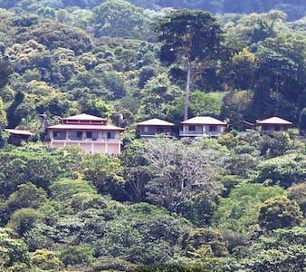 Many's House -  Villa Rustica