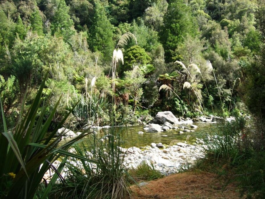 The Kaniere River, forms the Northern boundary on our property.