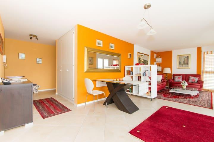 037 Room in a flat in Villeneuve - Villeneuve - Appartement