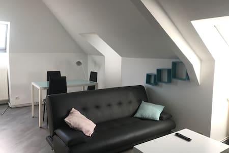 beau T2 lumineux 30 m²