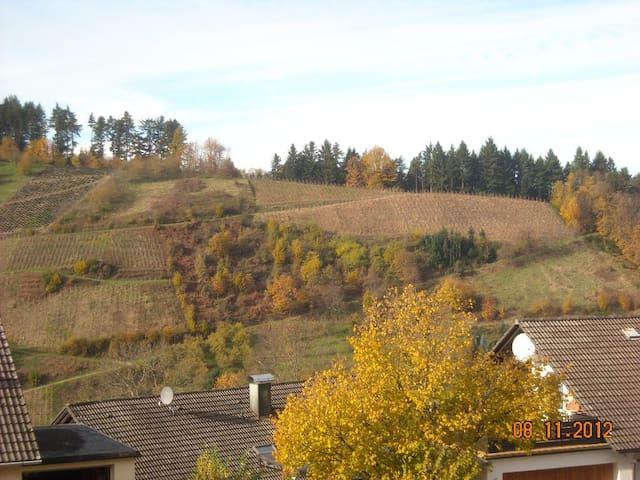 Appartement en Forêt-Noire 300m d'altitude.