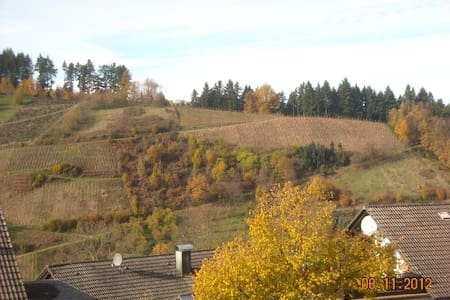 Appartement en Forêt-Noire 300m d'altitude. - Oberkirch - Appartement