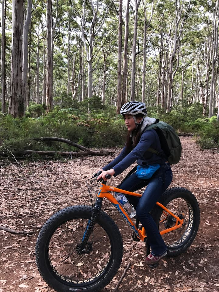 Riding a at bike in the Karri forest