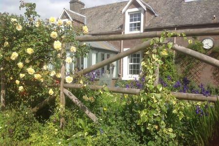 Ivy cottage. Crieff - Crieff - House