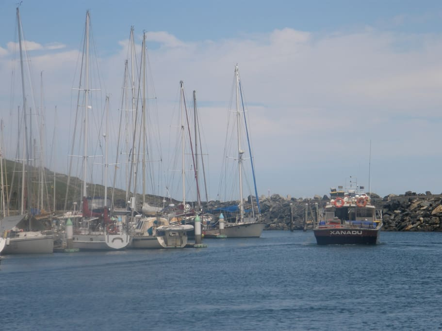 International marina down at the jetty. A short drive away or beautiful 15 minute stroll along the beach or nature paths.