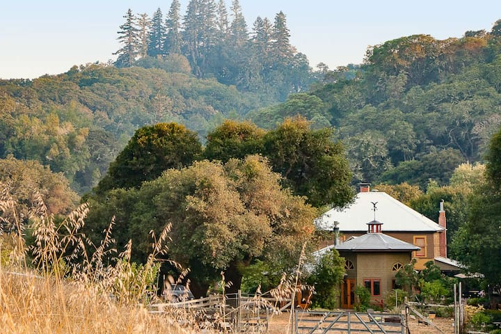 The Bunkhouse and Toll House nestled in the Oaks and Firs.