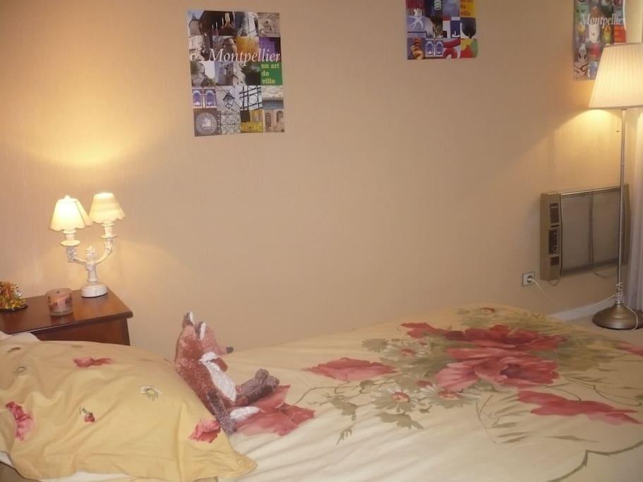 pour une personne seule un lit en 120 ça peut être  agréable aussi ...