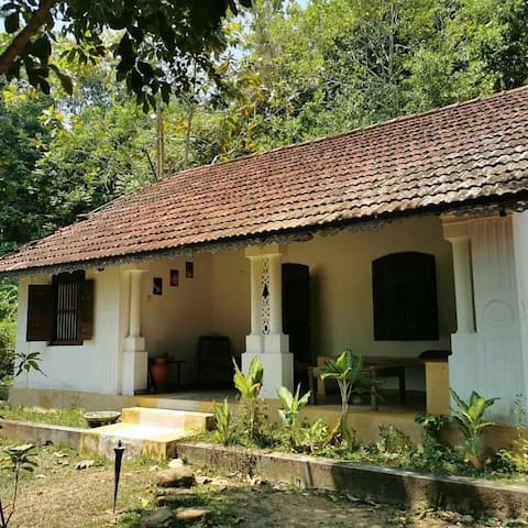 Jungle House, 5min Walk Dalawalla beach & Sri yoga