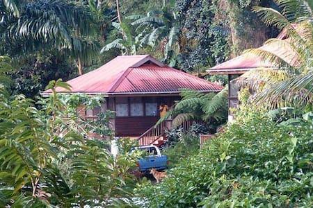 Oasis in paradise - Roseau - Bed & Breakfast