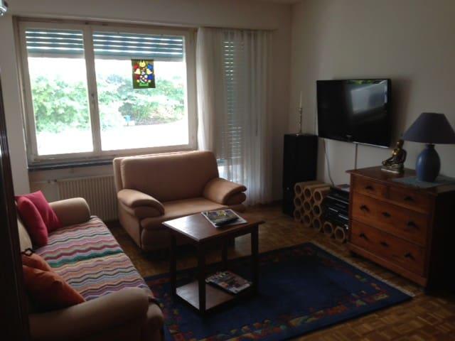 Wohnung an der Grenze zu Basel - Binningen - Appartement