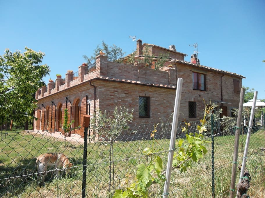 Apartament in tipical Toscany casol