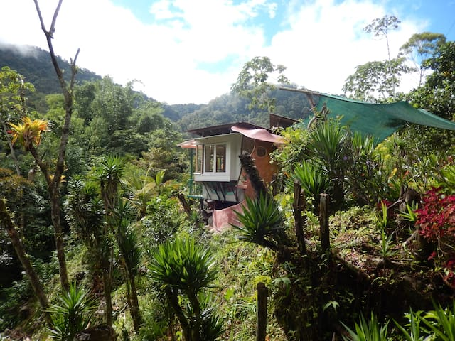 TheBirdhouse, Rio Chirripo  Sunny Mountain Comfort