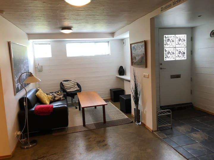 Cozy and spacious studio apartment