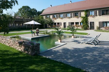 Schoppenwihr Loft Apt 'le MAGASIN' - Ostheim