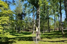 Frisbee Golf, 9 hole course stretched across all 21 acres