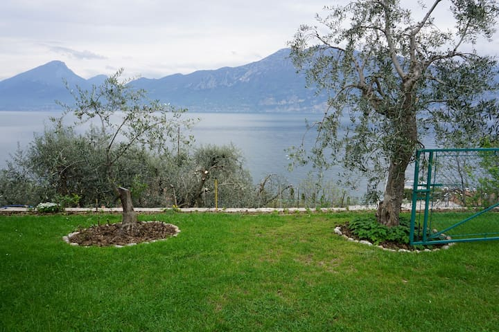 Private olive trees garden with view (15mt far from the Flat)