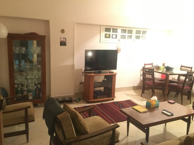 One bedroom apartment in Zamalek - Mohammed Mazhar - Apartment