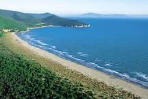 The famous beach of Castiglione di Pescaia
