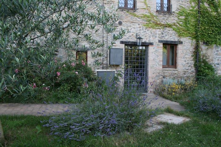 CASALE VIGNOLO LA TORRE tra i fiori - Orvieto - Maison