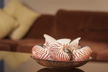 The Nautilus Room on Straddie - Dunwich - Apartment