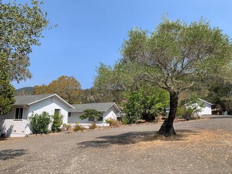 Cozy Sonoma Studio Nearby Wineries and Restaurants