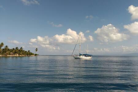 Sea Quill - Loď