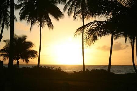 Escape To a Caribbean Beach Home,PR - Ház