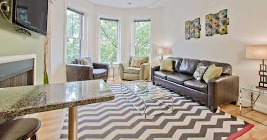 [1293-1/1] Lovely 1 BR in South End - Boston - Byt