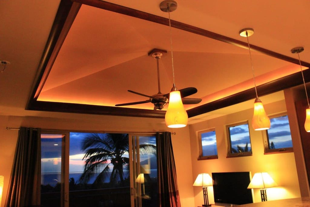 Vaulted Lighted Ceiling In Living Room