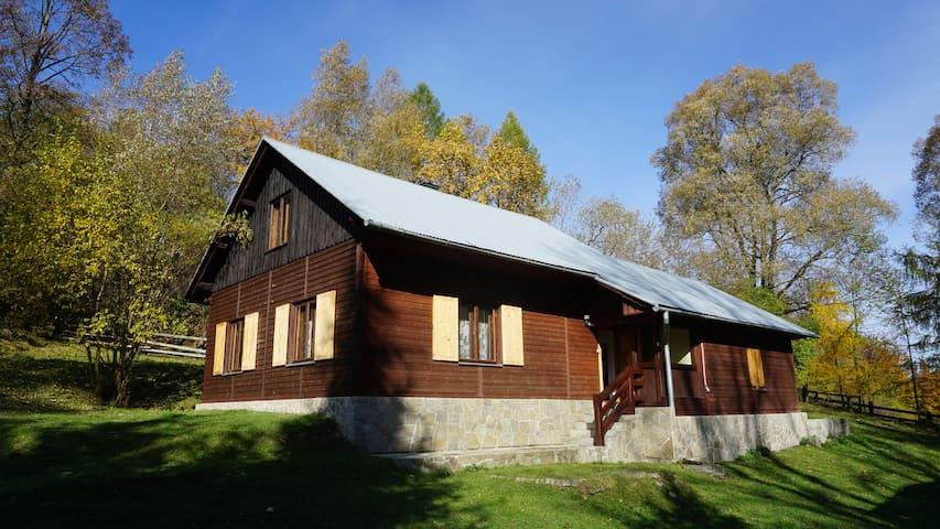 Dom w Uhryniu - Uhryń - Rumah