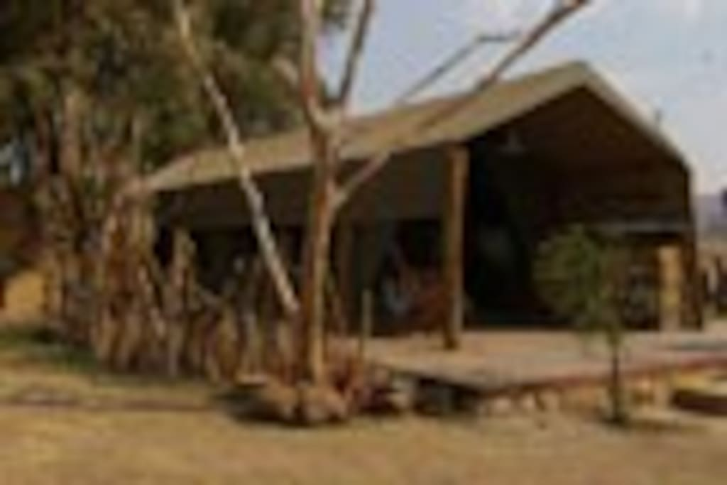 Exquisite suites luxury safari tents