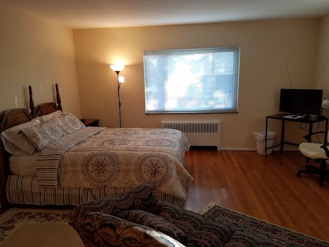 Clifton Gaslight apt close to U.C. and downtown - Cincinnati - Daire