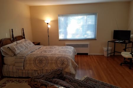 Clifton Gaslight apt close to U.C. and downtown - Cincinnati - Appartement