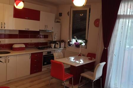Apartament Radmila