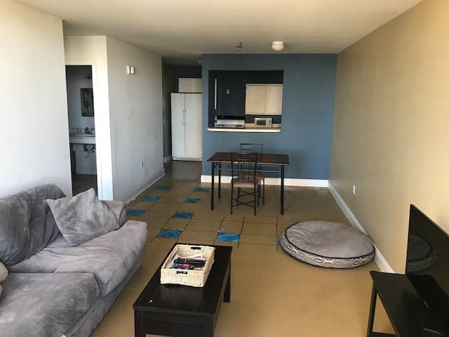 Affordable Downtown Pet-Friendly Apt Minimalistic