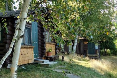 Bear Cabin at Wilderness Wind