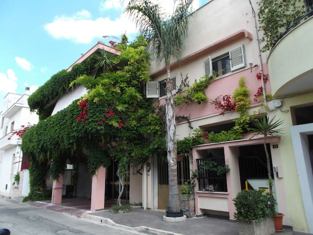 B&B Sabba in Salento Apulia - Italy - Manduria - Apartment