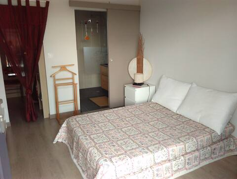 chambre , sdb privée , terrasse 20 m 2, wifi, clim