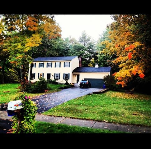 Cozy home in a great location! - Colchester - House