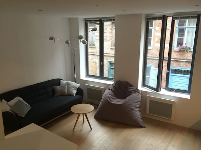 Bel appartement dans une rue pleine de charme - Lille - Appartement