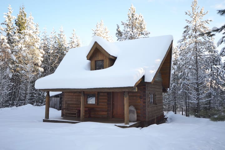 Violet Cabin - Beautiful cabin in the Larch Hills - Salmon Arm