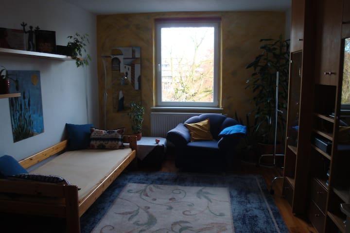 Helles Privatzimmer, zentral, bequem, freundlich - Augsburg - Leilighet