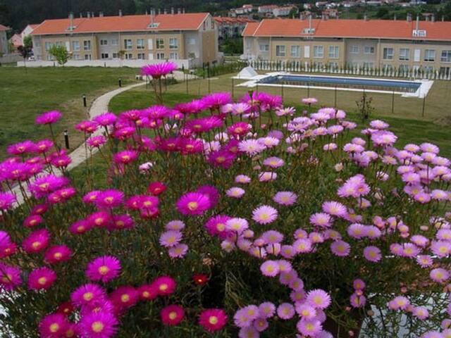 Vista desde la terraza a la piscina y jardín comunitario