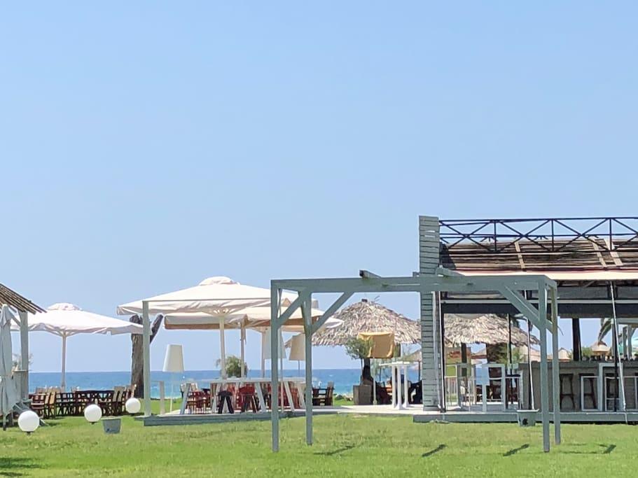 CONHO  Beach bar with some birds umbrellas and menus 200 meters