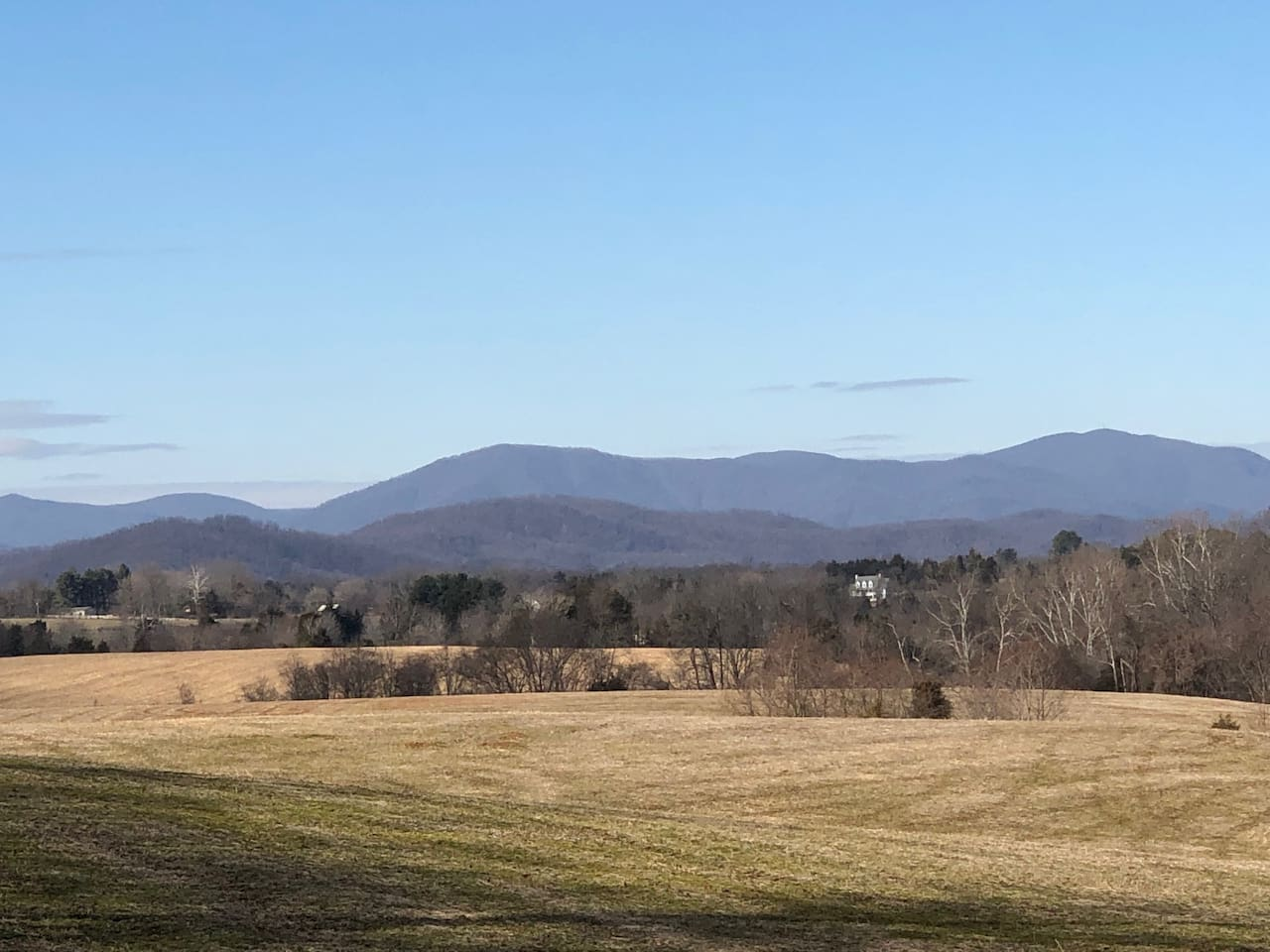 Solstice Farm (Middle View) with the Blue Ridge behind, what a location!