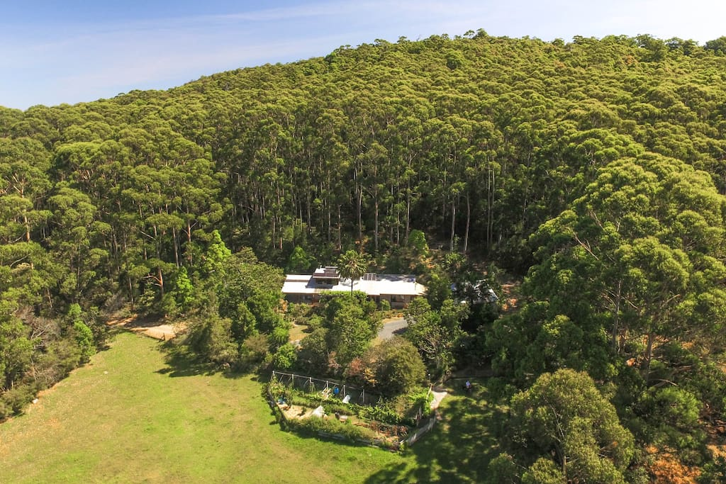 Hidden away in the forest, yet just a few minutes drive from beaches, lakes, national parks...and the  buzz of Blueys Beach cafes and shops