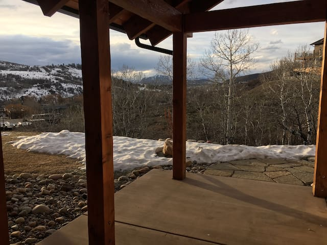 Private, Quiet, One Bed Room with a Great View - Steamboat Springs - Apartment