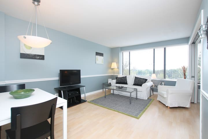 one bedroom apartment apartments for rent in arlington virginia