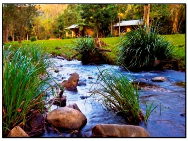 Cottages on the Creek - Cottage 1 - Currumbin Valley - Chalet